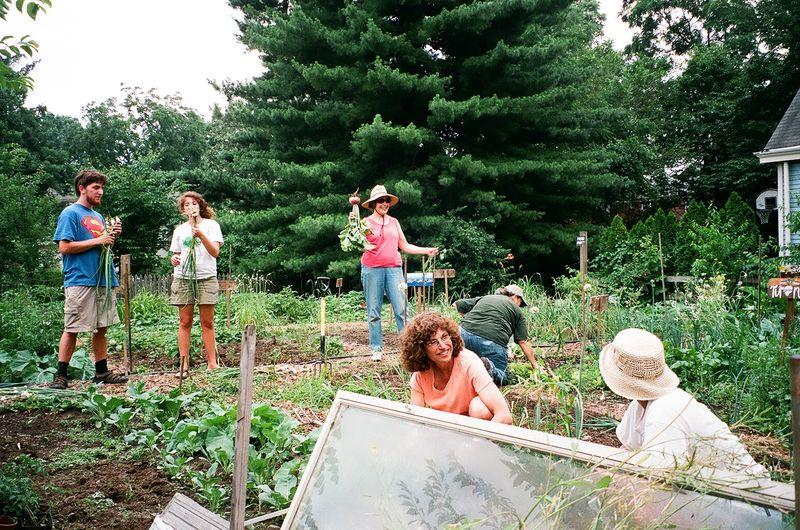 Sal GardenPartyGroup
