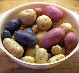 Potatoes2007a